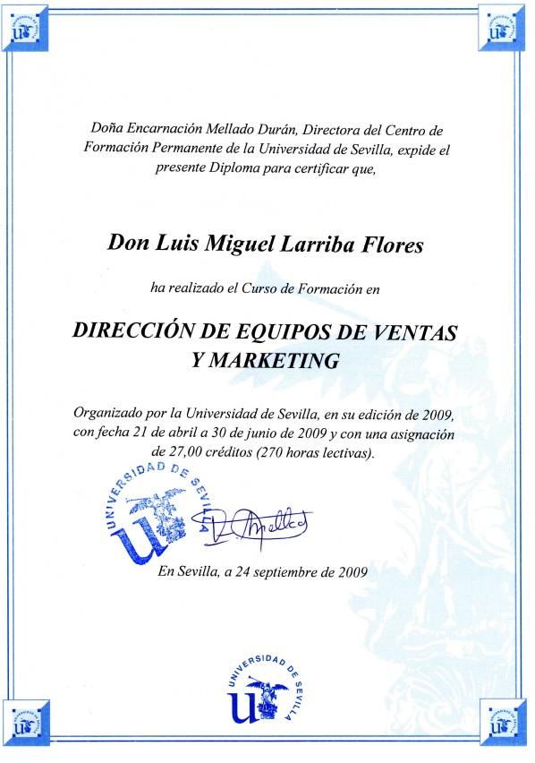 Dirección de Equipos de Ventas y Marketing - Univ Sevilla